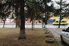 Приміщення вільного призначення в Хмельницькому, продаж по Чорновола Вячеслава вулиця 60, район Загот Зерно, ціна: договірна за об'єкт фото 5