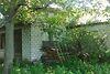 Земля под жилую застройку в селе Червоная Слобода, площадь 12 соток фото 7
