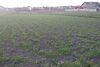 Земля под жилую застройку в селе Геронимовка, площадь 12 соток фото 8