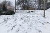 Земля под жилую застройку в селе Михальча, площадь 9 соток фото 7