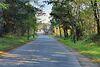 Земля під житлову забудову в селі Обухівка, площа 14 соток фото 2