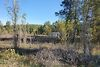 Земля під житлову забудову в селі Обухівка, площа 14 соток фото 6