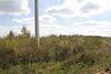 Земля під житлову забудову в селі Лісові Гринівці, площа 10 соток фото 6