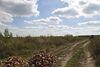 Земля під житлову забудову в селі Лісові Гринівці, площа 10 соток фото 7