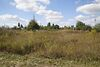 Земля під житлову забудову в селі Лісові Гринівці, площа 10 соток фото 4
