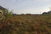 Земля под жилую застройку в селе Хриплин, площадь 10 соток фото 3