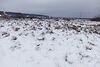 Земля под жилую застройку в селе Солнечное, площадь 10 соток фото 3