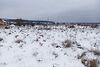 Земля под жилую застройку в селе Солнечное, площадь 10 соток фото 4