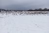 Земля под жилую застройку в селе Солнечное, площадь 10 соток фото 6