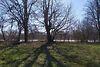 Земля під житлову забудову в селі Лукашівка, площа 27.69 сотки фото 5
