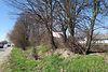 Земля під житлову забудову в селі Лукашівка, площа 27.69 сотки фото 7