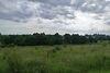 Земля под жилую застройку в селе Байковцы, площадь 8 соток фото 3