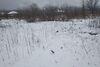 Земля под жилую застройку в селе Невицкое, площадь 10 соток фото 8