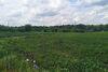 Земля под жилую застройку в Виннице, район Киевская, площадь 1.5 Га фото 8