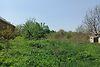 Земля під житлову забудову в селі Ксаверівка, площа 12.5 сотки фото 5