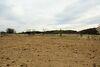 Земля под жилую застройку в селе Майдан-Чапельский, площадь 35 соток фото 3