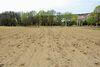 Земля под жилую застройку в селе Майдан-Чапельский, площадь 35 соток фото 5