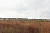 Земля під житлову забудову в селі Стрижавка, площа 6 соток фото 3