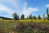 Земля під житлову забудову в селі Стрижавка, площа 12.5 соток фото 7