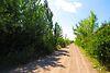 Земля комерційного призначення в Вінниці, район Хутір Шевченко, площа 5 Га фото 8