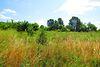 Земля комерційного призначення в Вінниці, район Хутір Шевченко, площа 5 Га фото 3