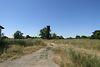 Земля сельскохозяйственного назначения в селе Воробеевка, площадь 6 Га фото 8