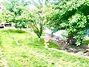 Продаж частини будинку в Могилеві-Подільському, Пчілки Олени 3, район Могилів-Подільський, 4 кімнати фото 4