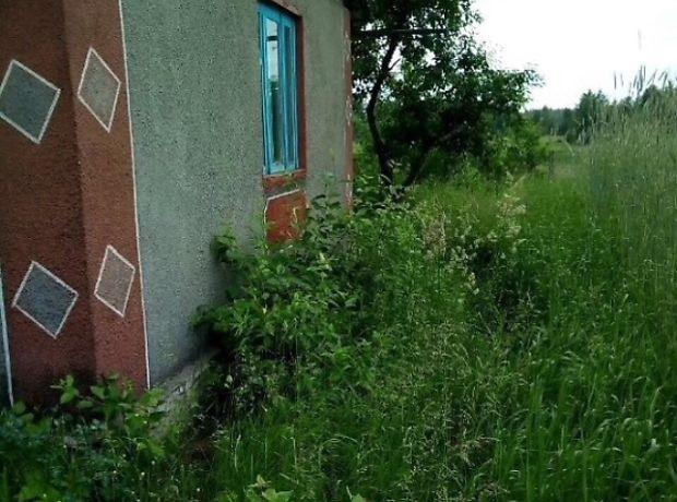 однокомнатная дача, 30 кв. м, кирпич. Продажа в Туровце (Житомирская обл.) фото 1