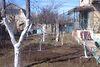 п`ятикімнатна дача з цокольним поверхом, 87 кв. м, цегла. Продаж в Новій Дофінівці (Одеська обл.) фото 1