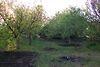 трикімнатна дача, 40 кв. м, ракушняк. Продаж в Кароліно-Бугазі (Одеська обл.) фото 5