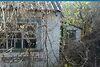 двухкомнатная дача без мебели, 60 кв. м, дерево и кирпич. Продажа в Петровке (Полтавская обл.) фото 1