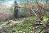 двухкомнатная дача без мебели, 60 кв. м, дерево и кирпич. Продажа в Петровке (Полтавская обл.) фото 2