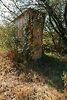 двухкомнатная дача, 50 кв. м, кирпич. Продажа в Ивачеву Горишнему (Тернопольская обл.) фото 4