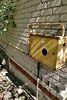 двухкомнатная дача, 50 кв. м, кирпич. Продажа в Ивачеву Горишнему (Тернопольская обл.) фото 5