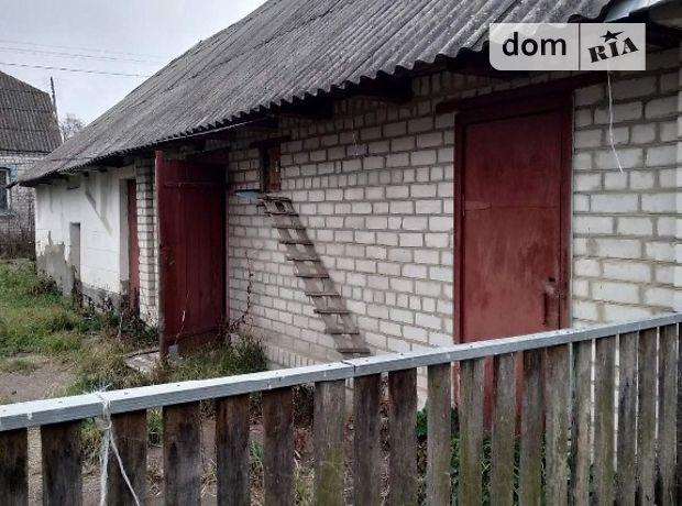 одноэтажный дом с садом, 88 кв. м, кирпич. Продажа в Старом Солотвине (Житомирская обл.) фото 1