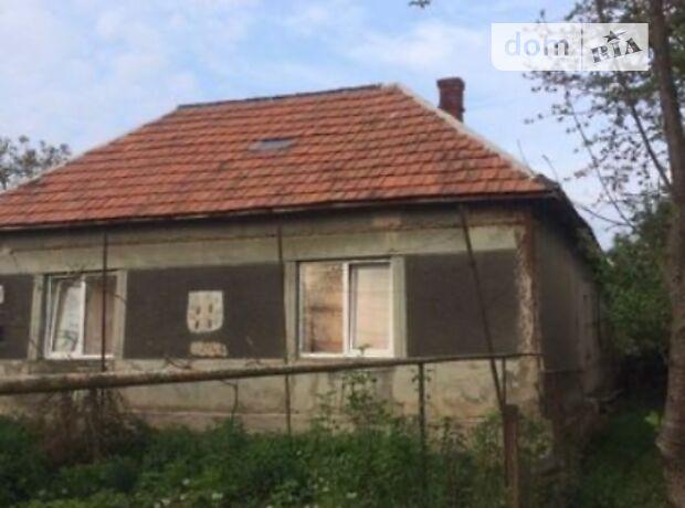 одноэтажный дом с камином, 120 кв. м, кирпич. Продажа в Косони (Закарпатская обл.) фото 1