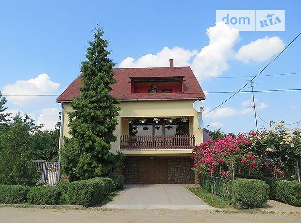 двухэтажный дом с камином, 370 кв. м, кирпич. Продажа в Великой Бакте (Закарпатская обл.) фото 1