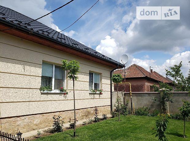 одноэтажный дом с садом, 140 кв. м, кирпич. Продажа в Яноше (Закарпатская обл.) фото 1