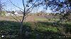 одноповерховий будинок з садом, 50 кв. м, цегла. Продаж в Джулинці (Вінницька обл.) фото 3