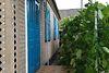 одноповерховий будинок з садом, 120 кв. м, шлакоблок. Продаж в Поташні (Вінницька обл.) фото 5