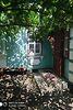 одноэтажный дом с садом, 56 кв. м, кирпич. Продажа в Бобринце район Бобринец фото 2