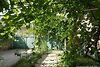 одноповерховий будинок з підвалом, 150 кв. м, цегла. Продаж в Червоноармійське (Одеська обл.) фото 6