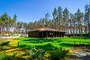 одноэтажный дом с садом, 200 кв. м, газобетон. Продажа в Гнедине (Киевская обл.) фото 4
