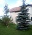 двухэтажный дом с камином, 294 кв. м, газобетон. Продажа в Рожнах (Киевская обл.) фото 6