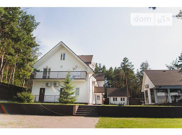 двухэтажный дом с камином, 312 кв. м, кирпич. Продажа в Крещатике (Черкасская обл.) фото 1