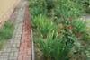 двухэтажный дом с террасой, 180 кв. м, кирпич. Продажа в Киенке (Черниговская обл.) фото 7