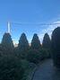 двоповерховий будинок з каміном, 342 кв. м, цегла. Продаж в Великому Кучерові (Чернівецька обл.) фото 6