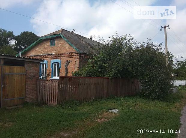 одноэтажный дом с камином, 90 кв. м, кирпич. Продажа в Великих Коровинцев (Житомирская обл.) фото 1