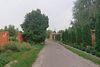 двухэтажный дом с подвалом, 460 кв. м, кирпич. Продажа в Орловщине (Днепропетровская обл.) фото 5