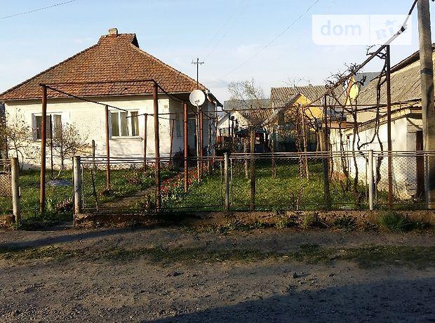 одноэтажный дом с садом, 120 кв. м, кирпич. Продажа в Кушнице (Закарпатская обл.) фото 1